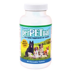 perpetual nutrition for dogs